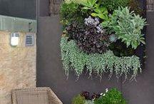 green thumb / garden obsessed