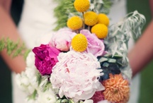 Color: Rainbow / by WeddingMoons