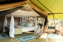 Offbeat Meru Safaris / by HoneyTrek