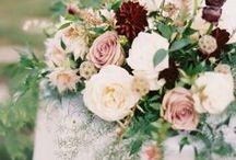 flowers   crimson / Reds, burgundy, marsala flowers