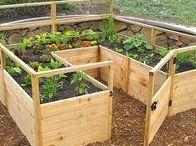 G A R D E N L O V E / Met ons nieuwe huis kwam er een enorme tuin! En dus moest ik gauw leren tuinieren. Nu is het een favoriete hobby geworden!  ~~~ tuin, tuinieren, bloemen, planten, bomen, grasveld, moestuin, tuinhek, tuinpoort, kippen houden ~~~