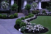 Home ~ Curb Appeal