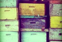 Beekeeping / beekeeping, honey, raw honey, raising bees, helping bees, honeybees, beehives