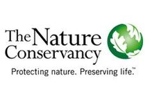 The Nature Conservancy / Everything to know about The Nature Conservancy and what you can do to help!