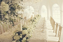 dream wedding / by Natalie Sanders