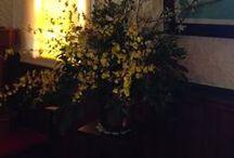 F L O W E R S / I'm a florist also...