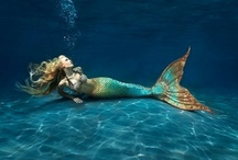 Project Mermaid
