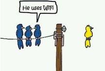 Social Media Marketing Humor