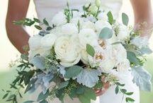 Catch Bella's Bridal Bouquet Favorites / Bella's Favorite Bridal Bouquets!  Get Inspired!!