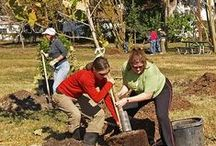 Environment / Visit our Environment portal, www.austintexas.gov/environment