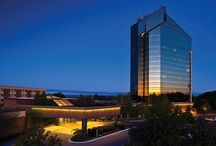 Traverse City Hotels / by Grand Traverse Resort And Spa