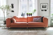 Interior Design / The best of design for the inside of home and work place.