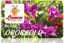 LAMON az igazi örökzöld / Művirágok, selyem és műanyag, csokrok