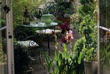 ..:: home : garden ::.. / by Kyra van Nimwegen