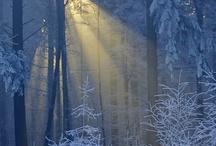Winter Wonderful
