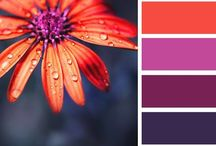 Color Palettes / Color palette for jewelry designers.