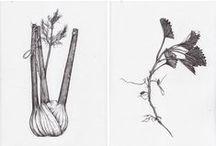 plants & vegs & fruits & trees