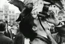 """Photographer / """"Prêts  à tout""""?"""