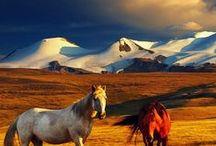 Mongolia, Nepal, Bhutan