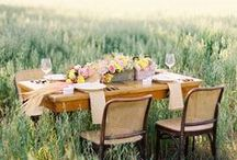 Meadow Wedding / A dewy meadow in the morning. Delicate poppies, a breeze teasing the grasses, and tasty treats you have loved from picnics.  / by Gretchen Hubbard