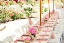 • celebrations • / birthdays holidays weddings & events