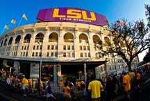 LSU, SLU, UGA, Saints, Astros, Braves, Pelicans, Etc. All the teams I love <3 / by Carol Broussard