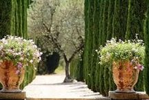 Great Gardens and Outdoor Inspirations