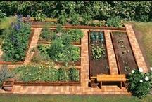Gardening/Landscaping