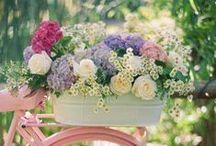 Garden flowers outside