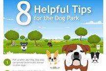 Pet infographics / Visually interesting tips about pets!