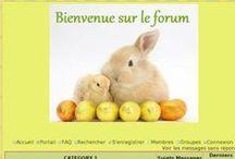 Thèmes de Pâques 2014 / Découvrez des thèmes de Pâques pour vos forums ainsi que des décorations sur le forum d'entraide (http://forum.forumactif.com/t366698-decorez-vos-forums-pour-paques)