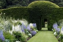 Gorgeous Gardens / by Kate Ingarfield