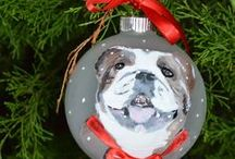 Pets and the Holidays / From Christmas to Thanksgiving: Enjoying the Holidays with Pets