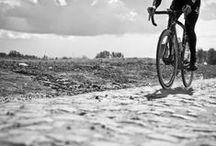 Ciclismo / by N a c h o B a r c i a