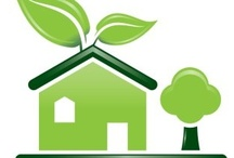 "Going ""Green"" / From Green (as in the color) to Green (as in energy-efficient and earth friendly) - Green is hot right now, and what better month to share some ""Green"" ideas than March!  Learn more about building your ""Green"" home in Florida at www.HighlandHomes.ORG."