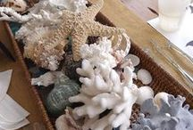 SEASHELL CHIC / Shells for any style