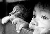 Pets / by Mardesia | Keeping Your Cents