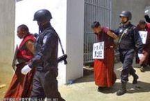 Tibete { In Exile } / by MariaSobralMendonça
