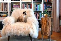 Fun Fur / Decorating with fur throws, rugs, pillows, and fabric