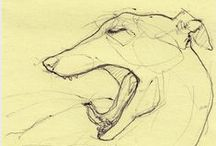 Sketches / by abse