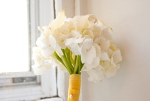 Floral / My oh so favorite floral things that I oh so dream of doing! / by Kelsey Moore