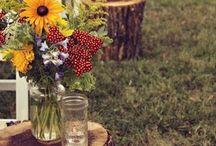 Wedding Ideas / by Janna Glover