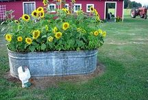 Gardening Ideas / by Janna Glover