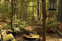 Garden Visions / Visions for my garden and ideas I'd like to execute in the garden.