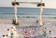 Wedding Ideas / by Penny Harvey