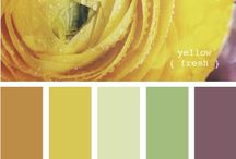 Home-Paint Colors / by Brenda Hively