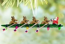 Holiday Fun and Inspiration / From gift giving ideas to holiday designs, this holiday board is oarsome!