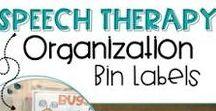Speech Therapy Room Decor & Organization / Ideas for organizing and room decor speech therapy materials and TpT resources #speechtherapy #organization