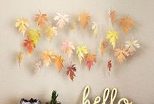 Fun & Festive Fall / The most beautiful season