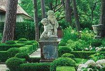 gardening / by Linda Shepherd